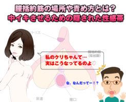 膣括約筋の場所や責め方とは?中イキさせるためのクリトリスの本体。