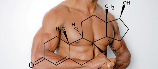 常に日頃からテストステロンを分泌しまくれる生活を心がける
