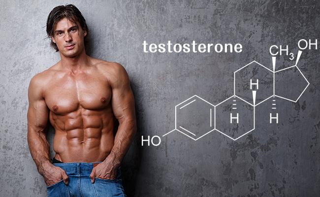 リザベリンでテストステロンの分泌量が増加する効果がある?